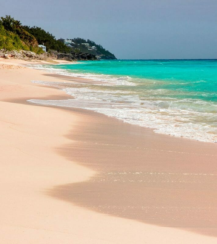 bermuda beach with pink sand