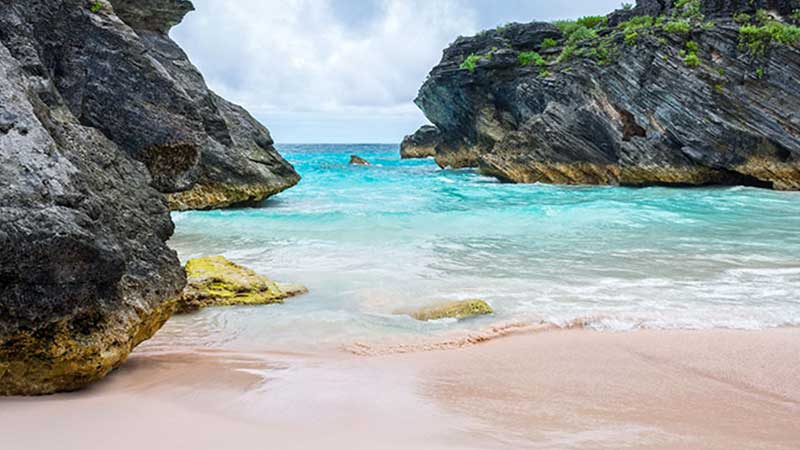 Bermuda's Pink Sand Beaches (Complete Guide)